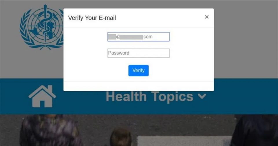 Figure 2. Following the link of the example in figure 1, you are asked to verify your e-mail for information, and they seize the opportunity to steal your credentials